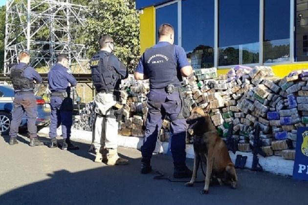 PRF e Guarda Municipal de Irati apreendem dois fuzis e 1,7 tonelada de maconha em caminhão