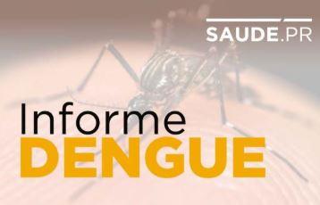 Dengue tem queda no número de notificações