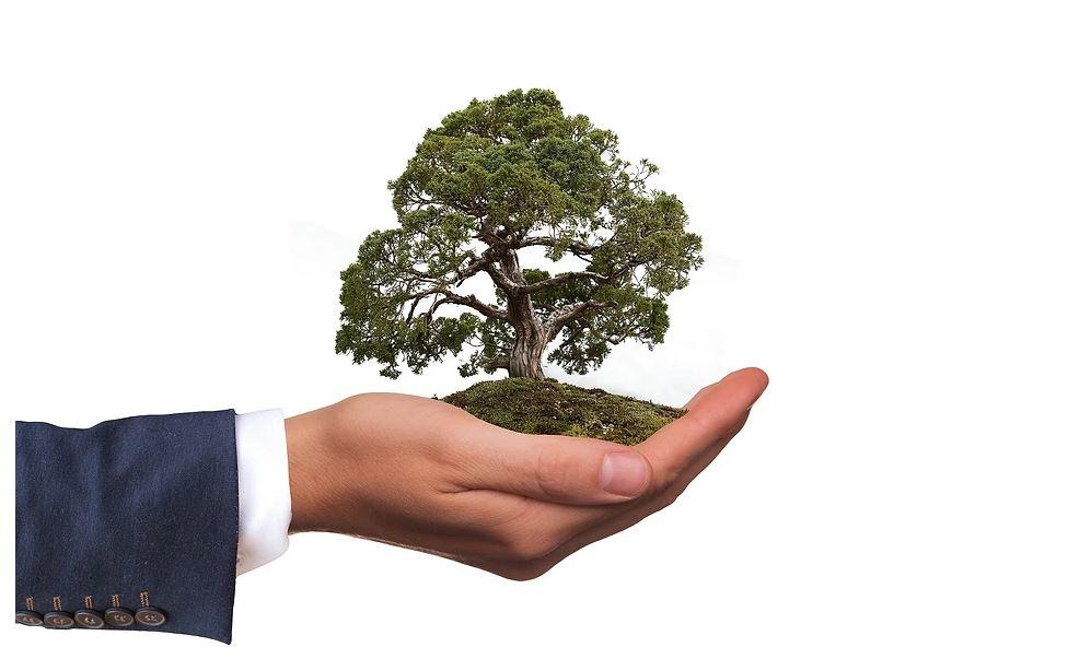 PEC que terceiriza Licenciamento Ambiental na mira no MP
