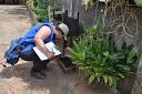 Com 12 casos registrados, Ponta Grossa possui o menor índice de incidência da Dengue em todo o estado
