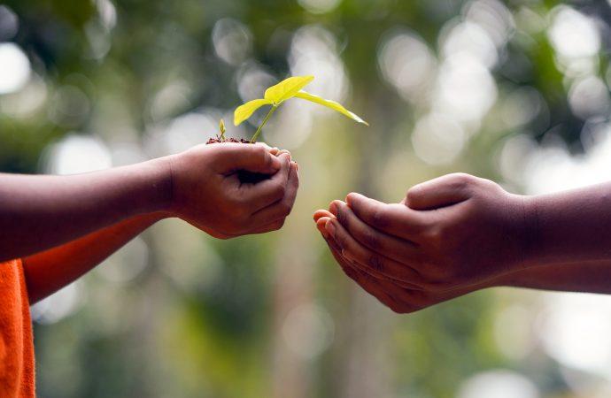 Crescimento com propósito e foco no ser humano são destaques no cooperativismo de crédito