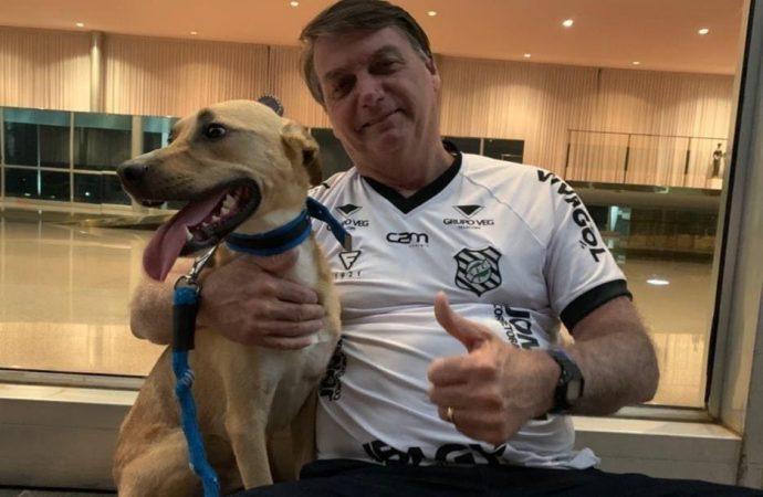 Nas redes sociais, Bolsonaro defende vacina obrigatória apenas para cachorro