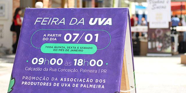 Feira da Uva de Palmeira acontece no calçadão da rua Conceição