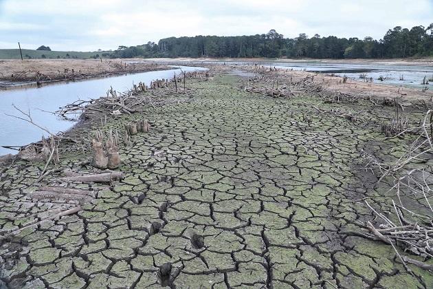 Fenômeno La Niña pode provocar seca no Paraná e Sanepar alerta para uso racional da água