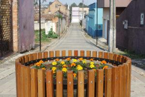Meio Ambiente realiza plantio de 2,5 mil flores e limpeza do Parque do Museu