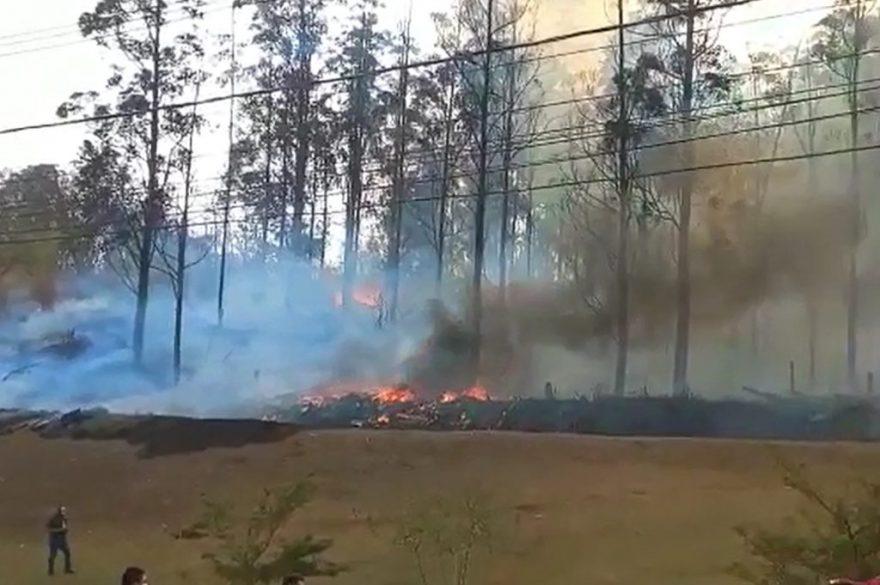 Vídeo: Avião cai em região de mata e sete pessoas morrem no interior de SP